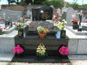 Plantes sur tombe